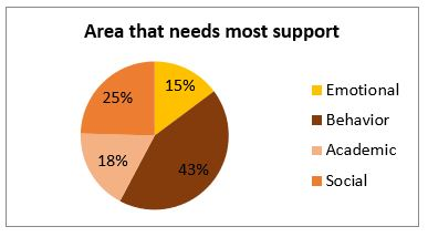 Pie chart: areas that they need the most support