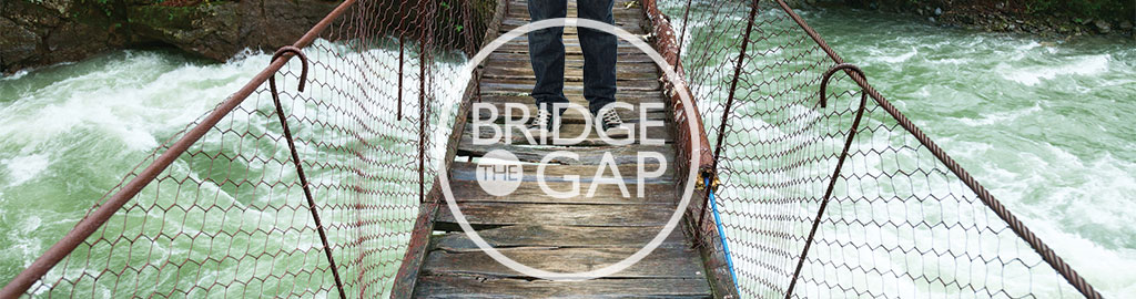 Bridge The Gap - Specific Learning Disability